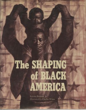 Shaping of Black America
